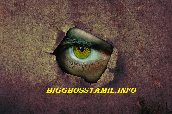 big boss tamil viewers